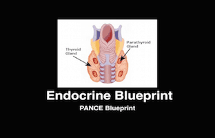 Endocrine, PANCE Review Courses, PANRE Review Courses, PANCE Review, PANRE Review, PANCE, PANRE, Physician Assistant, NCCPA Blueprint, COMLEX, USMLE, Free CME, CME